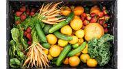 Tendance: Le veggie pour ados