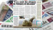 Attention, des attaques de phoques en Belgique ???