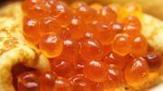 Caviar et Tarama les oeufs de poisson c'est bon