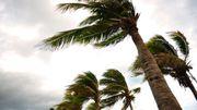 Amérique du Nord: Gert, deuxième ouragan de la saison
