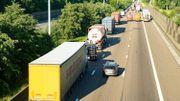 Accident sur l'E17 à Gentbrugge : une dizaine de vaches transportées par camion tuées