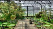 Visite virtuelle des Serres du jardin botanique de Liège