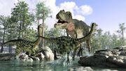 L'Univers des dinosaures s'installe le temps d'un week-end au Country Hall