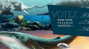 """Namur : votez pour votre fresque """" coup de cœur """" !"""