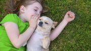 Doc Geo : Lutter contre les allergies aux animaux !