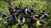 La protection des gorilles au parc des Virunga