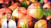 La fête aux pommes à l'Aquascope de Virelles : on craque, on croque