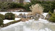 Quatre conseils pour soigner son jardin en hiver
