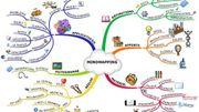 Carte heuristique ou mindmap