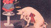 Une mise en image de l'animal face à la justice !