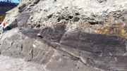 Découvertes archéologiques majeures sur le site de Tour et Taxis