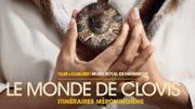 Le Monde de Clovis au Musée Royal de Mariemont se visite aussi en ligne
