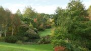 Les pentes du vallon de l'Etang de Launay offre une vue sur les 3 étangs creusés dans la partie basse de la propriété.