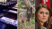 Restructuration chez Carrefour, le retour du loup et Opaline Meunier dans la Semaine Viva