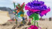 """La Flandre reconnaît les """"fleurs de plage"""" comme patrimoine immatériel"""