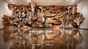 """C'est de l'art, sur le web : """"Transarquitetônica"""" par Henrique Oliveira"""