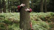 Un livre pour enfants sur les arbres de Bruxelles