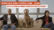 """Didier: """"Pour nos deux bichons nous avons opté pour la garde alternée"""""""