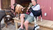 L'acteur Kevin Bacon chante du Peter Frampton pour ses chèvres… Et il lui répond!