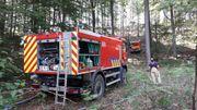 Les pompiers ont dû tirer de longues conduites d'eau à travers la forêt pour pouvoir arriver jusqu'à l'incendie situé à une centaine de mètres du chemin le plus proche