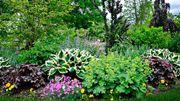 Jardins en Pays de Liège revient pour sa 20e édition