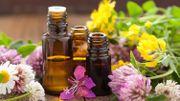 Nature & Progrès: les huiles essentielles BIO sont… essentielles