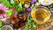 Lesremèdes naturels contre le rhume se trouvent dans notre alimentation!