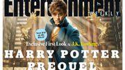 """Une première photo du spin-off de Harry Potter """"Les animaux fantastiques"""""""