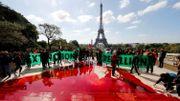Déclin de la biodiversité: du faux sang coule au Trocadéro, à Paris