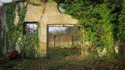 Urbex – Rurex au Centre Culturel de Bastogne: la Nuts City comme vous ne l'avez jamais vue
