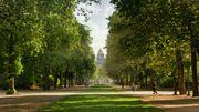 Un arbre planté pour chaque naissance à la Ville de Bruxelles