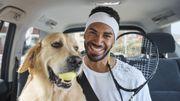 On peut désormais prendre son animal de compagnie en Uber Pet