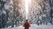 """Le """"sisu"""": un état d'esprit propre aux Finlandais bien utile par temps de pandémie"""