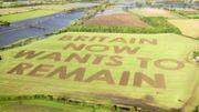 Un message géant contre le Brexit inscrit dans un champ par un agriculteur