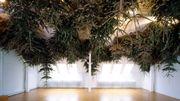 """It Never Ends"" - John M Armleder & Guest à Kanal-Centre Pompidou"