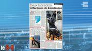 Deux Labradors détecteurs de Kamikazes: les animaux sont en cours de formation