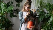 Comment ne pas faire mourir ses plantes ? Les conseils de la Youtubeuse Marion Botanical