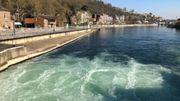 La Meuse transparente à certains endroits : les cours d'eau gagnent-ils actuellement en clarté ?