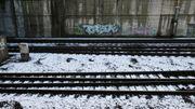300 voyageurs bloqués trois heures dans un train à cause du givre