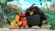 """""""Angry Birds"""" connaîtra bien une suite"""