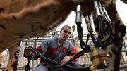 Le secteur du lait est particulièrement touché par la crise agricole en Europe