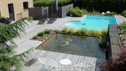 Un jardin où l'eau est l'élément dominant - Jean-François Stassen