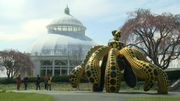 """Le Jardin botanique de New York célèbre Yayoi Kusama et ses """"racines"""" végétales"""