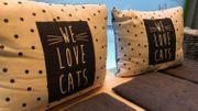 Les adresses de la rédac : le New Chattouille, un bar à chat tout doux, tout cosy