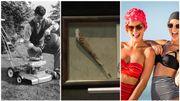Trois expositions insolites à visiter à l'étranger et en Belgique cet été