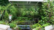 Rencontre avec Sylvère, un jardinier paysagiste ingénieux qui transforme les petits jardins en espaces luxuriants et originaux