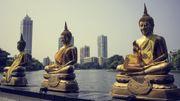Le Sri Lanka, destination de l'année 2019 selon Lonely Planet