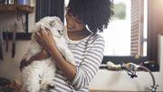 Le bienfaits de nos animaux
