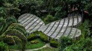 Vue du jardin botanique à Quindio, le 6 juillet 2020 créé par Alberto Gomez.
