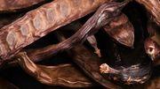 Comment utiliser la caroube, ou chocolat du pauvre?